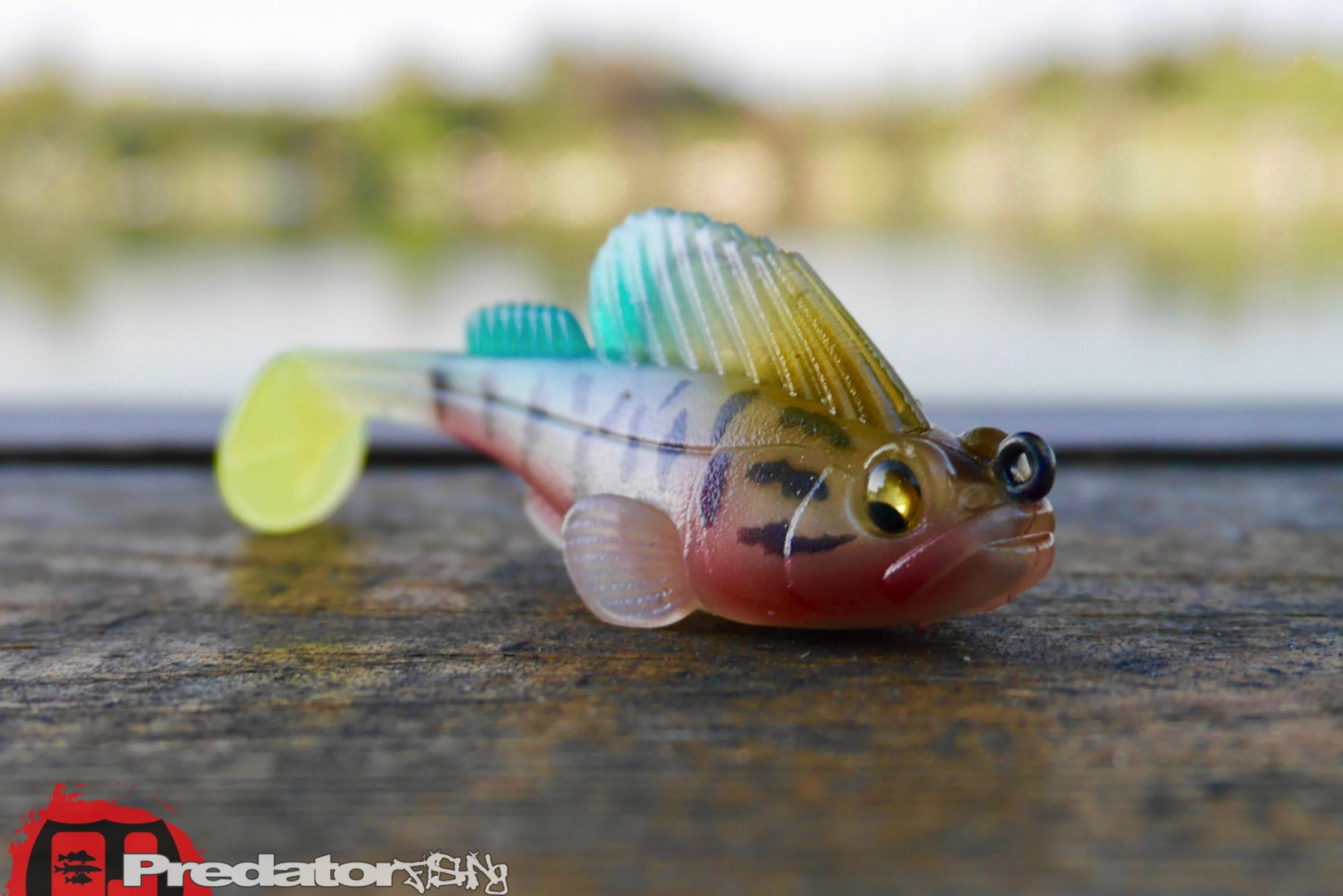 MEGABASS DARK SLEEPER – ☆ predator fishing ☆